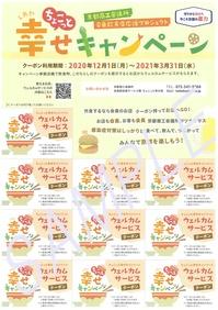 csc_coupon_sample.jpg